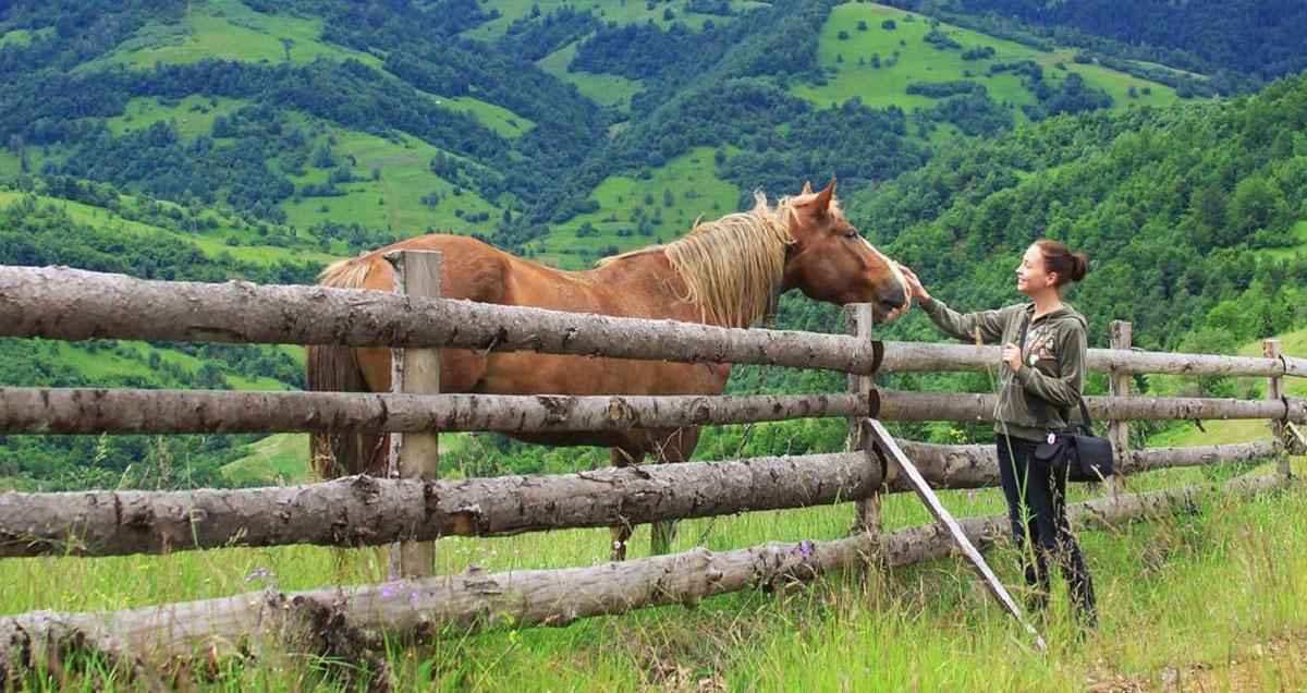 Прогулянки на конях у Верховині