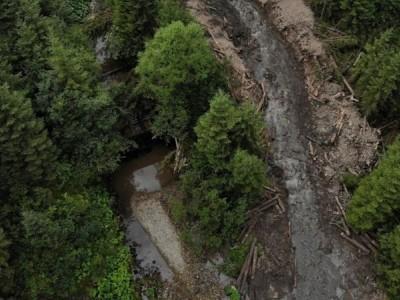 """Як """"запускають"""" гірські річки в Карпатах, перекриті ще за Австро-Угорщини"""